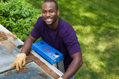 Diy Pest Control For Homeowners