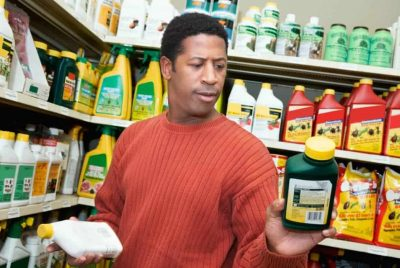 Pest Control Costs