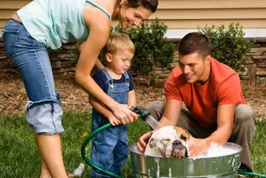 Pet Flea Bath To Get Rid Of Fleas