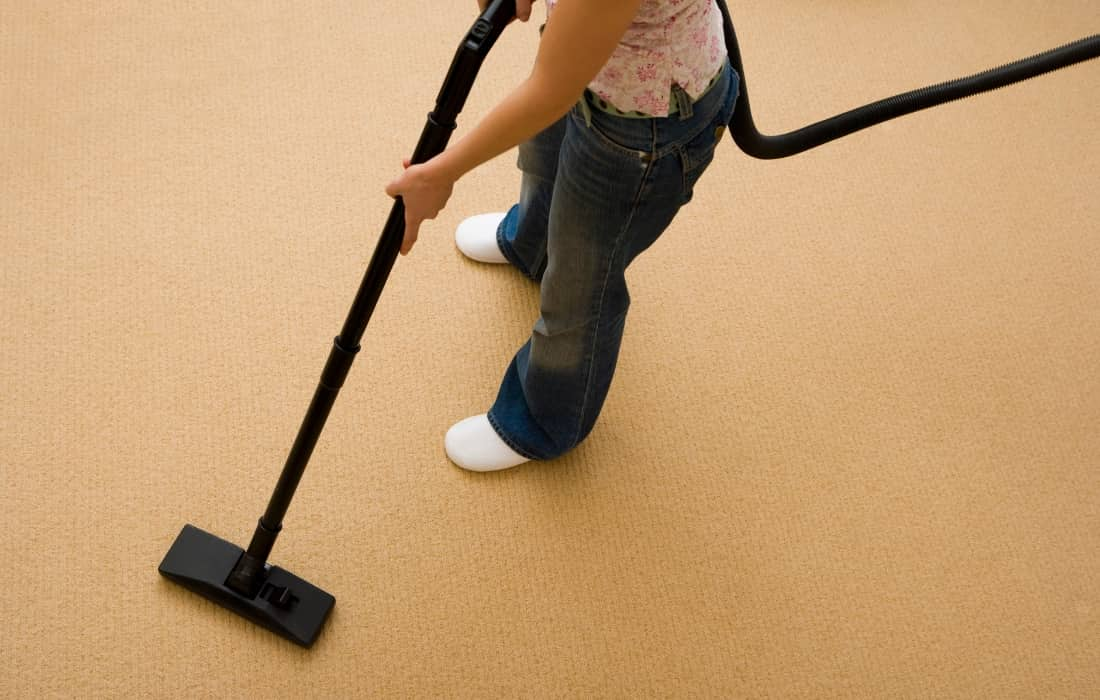 vacuuming kills fleas