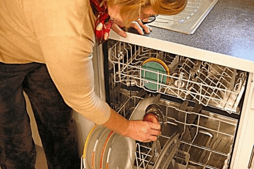 ants in dishwasher