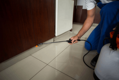 Diy Pest Control For Homes